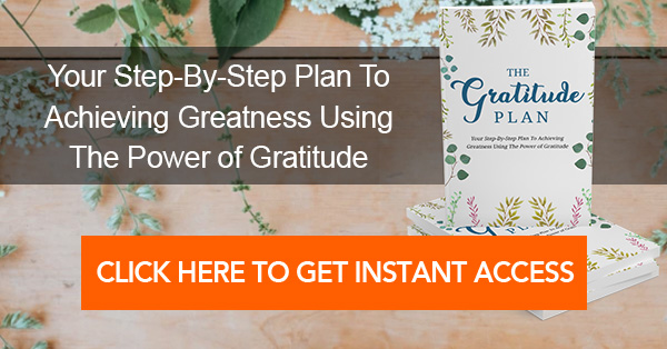 The Gratitude Plan: Your 52 Week Plan To Achieve Greatness Using The Power of Gratitude Ebook