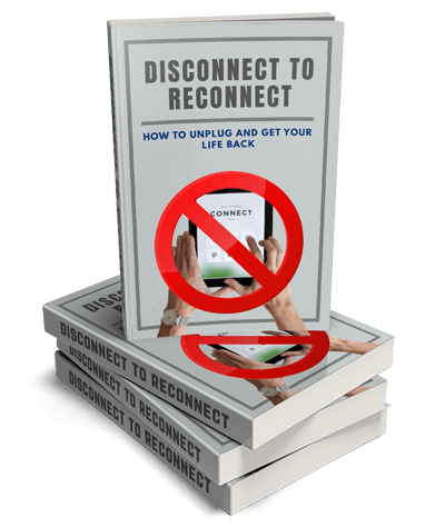 Disconnect To Reconnect Ebook